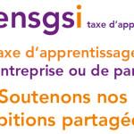 ENSGSI_taxe_don